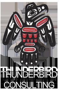 Thunderbird Consulting Logo
